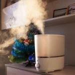【潤いに満ちた室内で美肌へ】部屋の乾燥を防ぐ3つの方法!