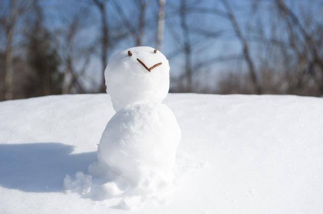 冬の美容成分