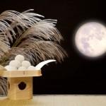 十五夜は月光浴しながら美肌になる!月に秘められた美肌効果とは