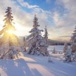 雪による日焼けに要注意!冬も欠かせない美肌のための日焼け対策