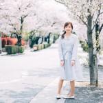 港区のオススメ花見スポット!桜の花から得られる美容効果