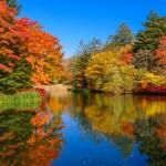 秋の紅葉美容!エステシャンオススメ港区紅葉スポット3選