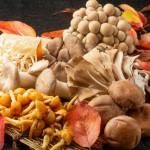 秋の味覚「キノコ」!美容効果をアップさせるキノコ鍋レシピ