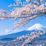 満開の桜でキレイになろう!都内の穴場「花見スポット」3選